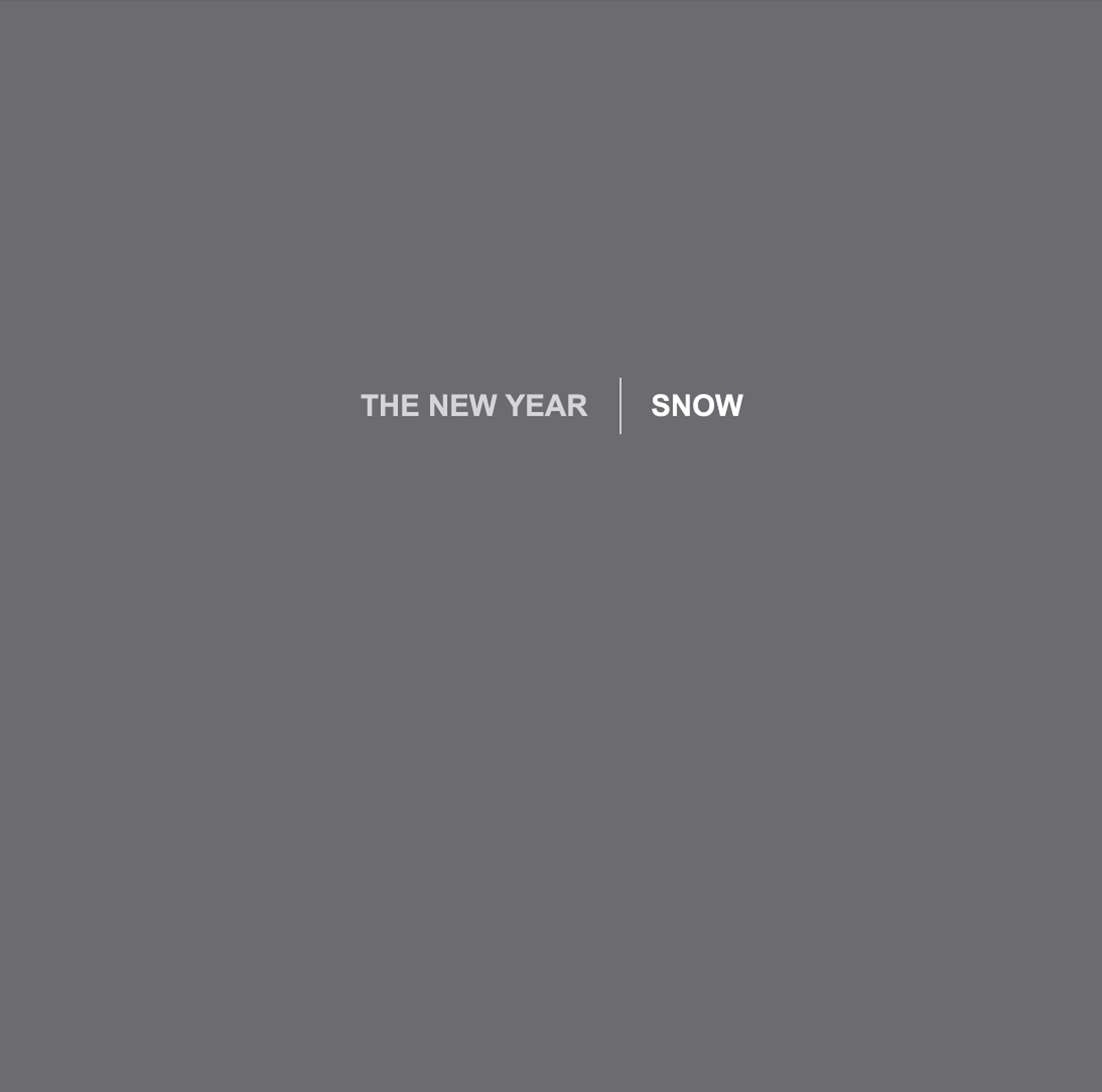 THE NEW YEAR SNOW